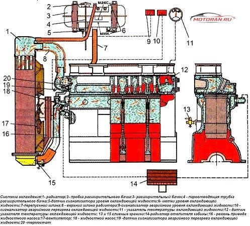 Система охлаждения Д240